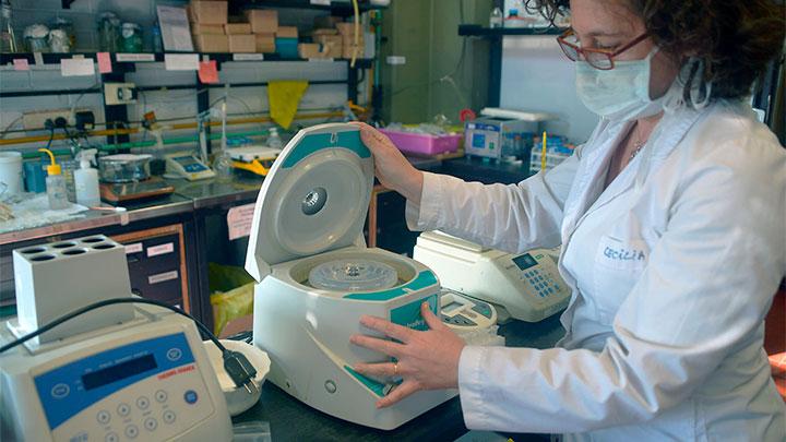 aporte-biotecnologico-anticovid-1